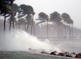 A power outage from Hurricane Irma in caused 14 resident deaths.