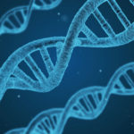 DNA, clinical daily
