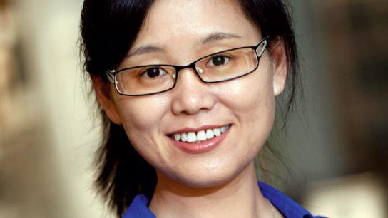 Meng Wang, Ph.D.